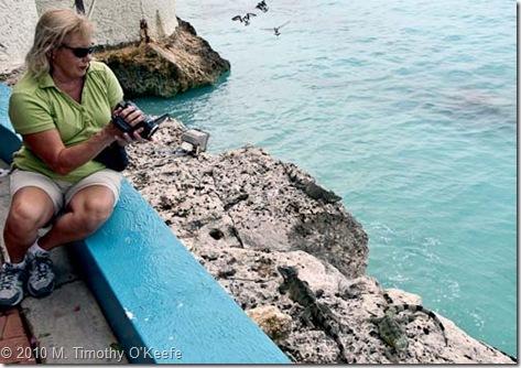capt don linda shoots iguanas-1