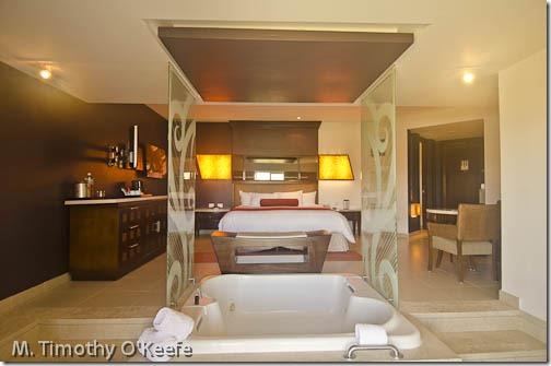 Hard Rock Hotel, Punta Cana, Dom Rep-3