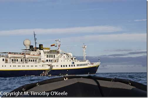 Galapagos Lindblad Expeditions National Geographic  Endeavour-2