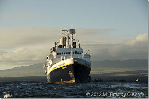 Galapagos Lindblad Expeditions National Geographic Endeavour-3