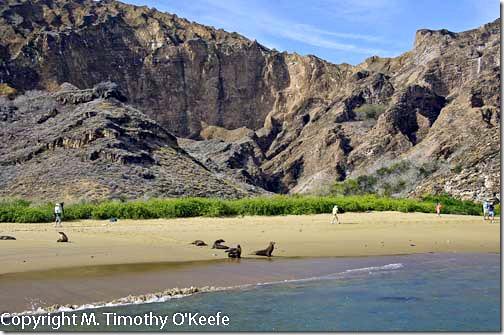 Galapagos San Cristobal Punta Pitt beach-1