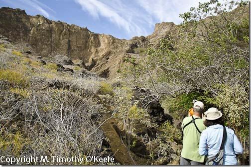 Galapagos San Cristobal Punta Pitt hike-1