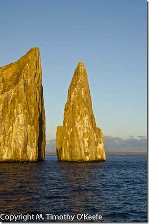 Galapagos San Cristobal leon dormido kicker rock-2