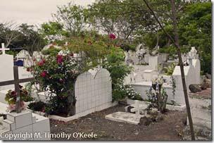 Santa Cruz cemetery-1blog