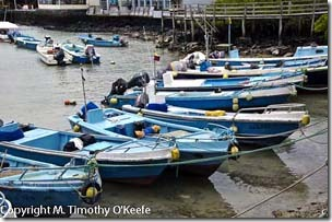 Santa Cruz fishing boats-1blog