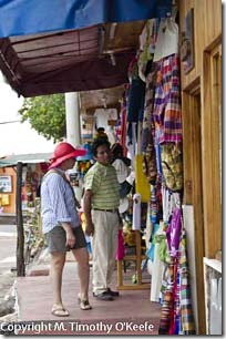 Santa Cruz woman shopper -1