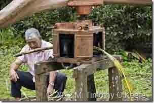 galapagos santa cruz  el trapiche sugar mill-2
