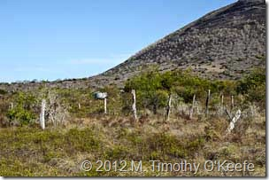 galapagos santiago puerto egas mountain fence-1