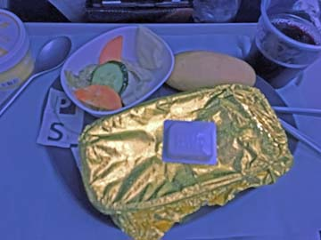 Delta Airlines Bistro-Style Dining Plate